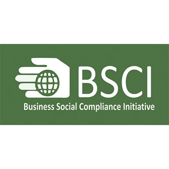 BCSI_Logo
